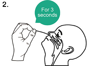 Test Procedure - Nasopharyngeal (Nose) Swab Method